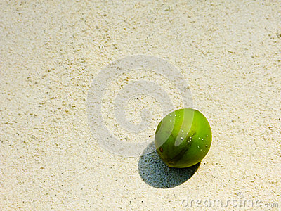 Green coconut on white sand beach