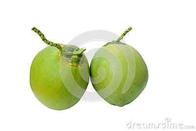 Green coconuts fruit isolated on white with clippi
