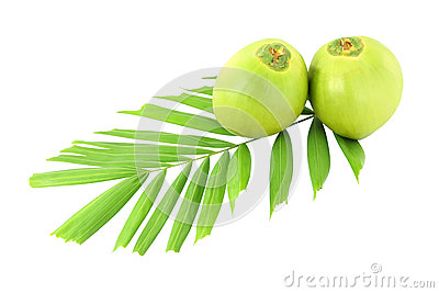 Green coconuts and leaf