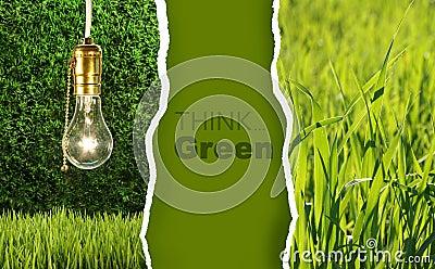 Green collection of eco-friendly photos