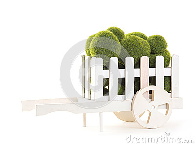 Green color Moss ball in wood cart