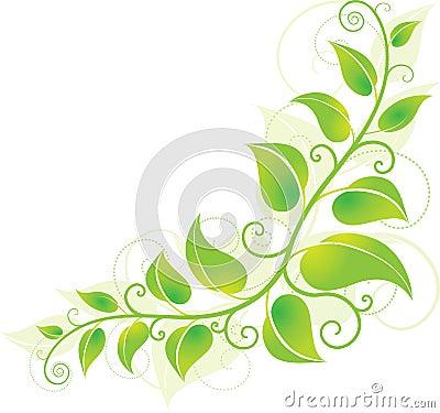 Green corner vine