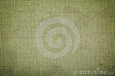 Green cotton fabric texture