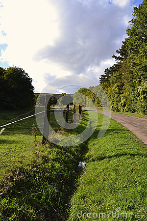 Free Green Country Road Royalty Free Stock Photo - 30255385
