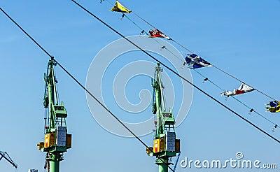 Green cranes