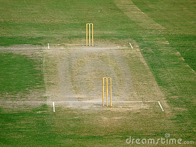 Green Cricket Pitch