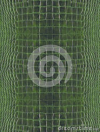 Green crocodile skin
