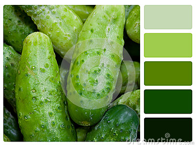 Green cucumbers colour palette swatch