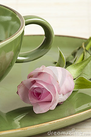 Green cup and rose