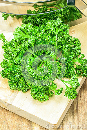 Free Green Curly Parsley Stock Image - 29083751