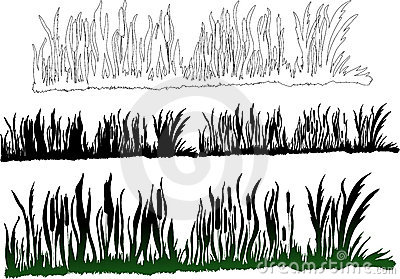 Green darkgreen grass
