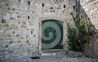 Green door with oleander