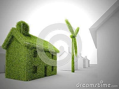 Green eco home