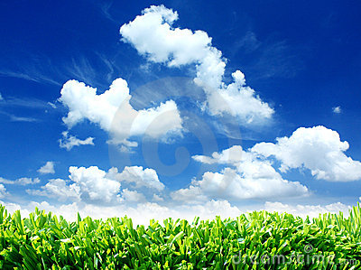 Green Eco Nature Sky Clouds and Grass