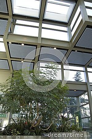 green eco office building interiors natural light. green eco office building interiors natural light stock o