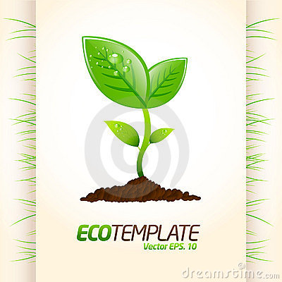Green eco template
