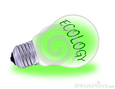 Green  electric energy from renewable sources