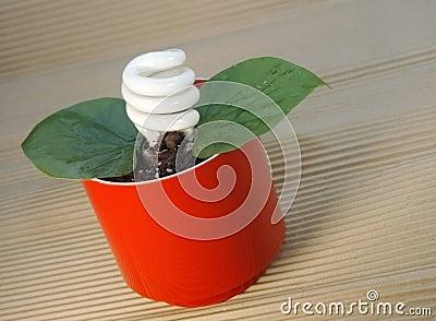 Green energii