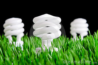 Green Energy Bulbs - Environmental Concept