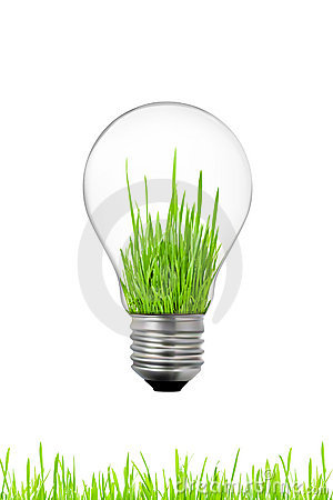 Free Green Energy Concept: Light Bulb With Grass Inside Royalty Free Stock Photos - 17408198
