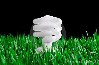 Green Energy - Environmental Concept