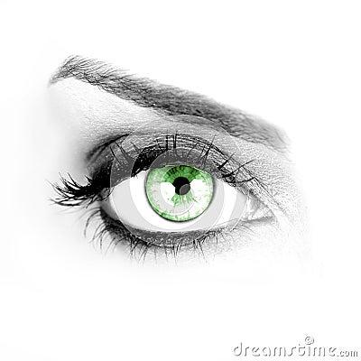 Free Green Eye Stock Image - 8169231