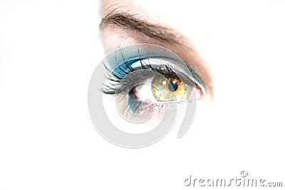 Green Eye looking forward