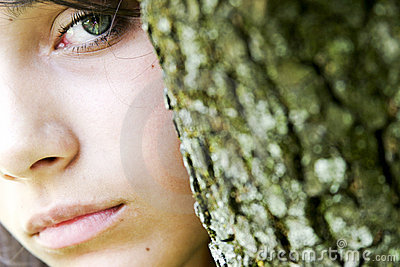 Green eyes from behind tree