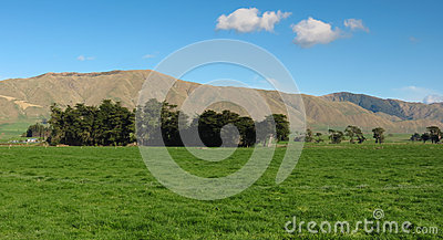 Green Farm Land