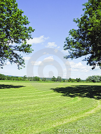 Free Green Field Royalty Free Stock Image - 19917196