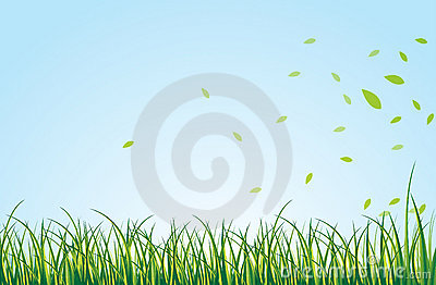 Green Field Royalty Free Stock Image - Image: 22125146