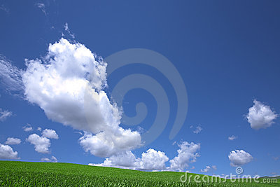 Green field and cloud and blue sky.