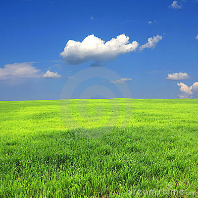 Green field and clouds in sky