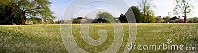 Green field (depth of field)