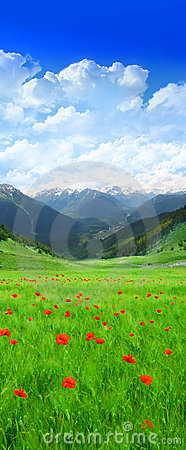 Free Green Field In Mountain Stock Photography - 2076932