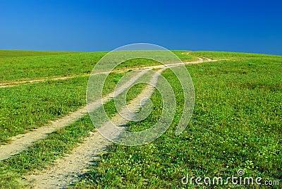 Green field, roads and sun sky