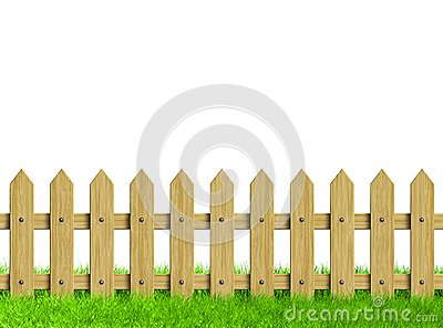 Green field and wooden fence