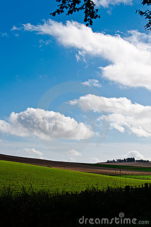 Green fields and cloudscape