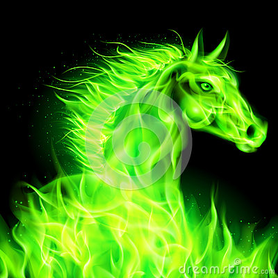 green fire horse head black background 34607665 Green Fire Wallpaper