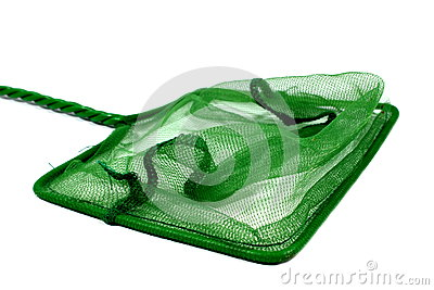 Green Fish Net