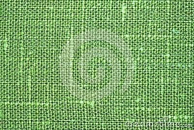 Green flax macro