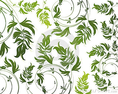 Green Floral Pattern On White Background Royalty Free Stock Photos - Image: 12708448