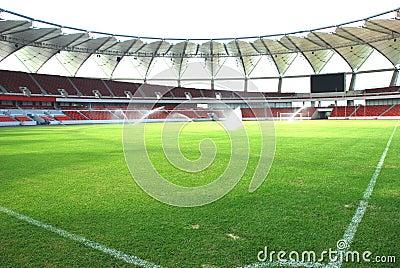 Green football pitch