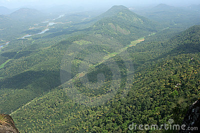 Green forested mountains
