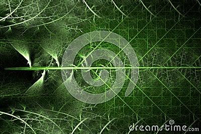 Green fractal fern