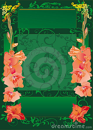 Green frame with red gladiolus flowers