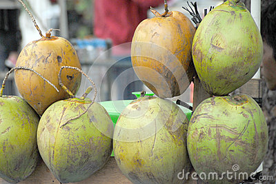 Green fresh coconuts