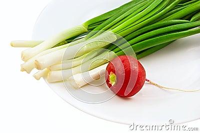 Green fresh onion and radish