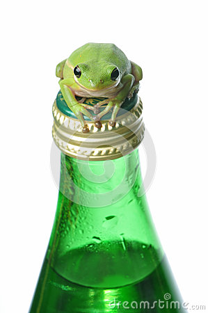 Green Frog on Green Bottle