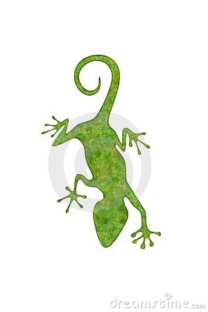 Green Gecko on white